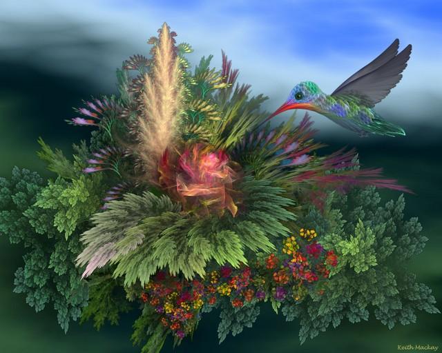 Keith Mackay-Fractal-Hummingbird_3
